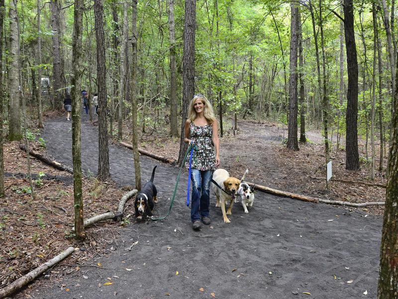 Remy's Dog Park