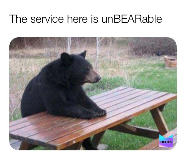 Bear at a picnic table meme