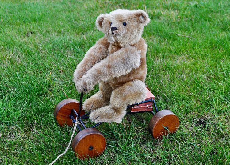 Steiff Record Teddy Bear