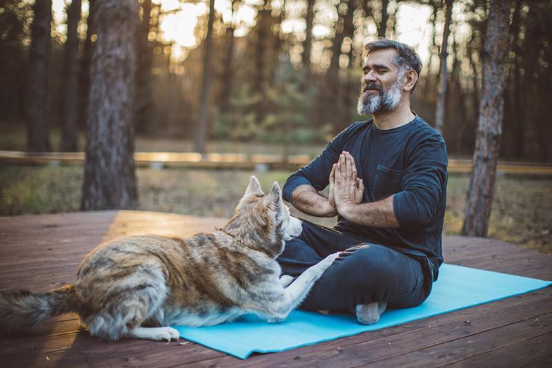 Meditation with a dog