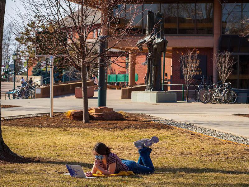 Student at University of Vermont