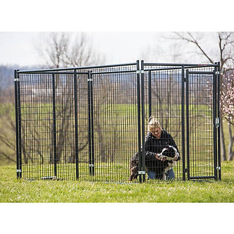 Tractor Supply dog kennel: Tarter Blue Champion Complete Dog Kennel