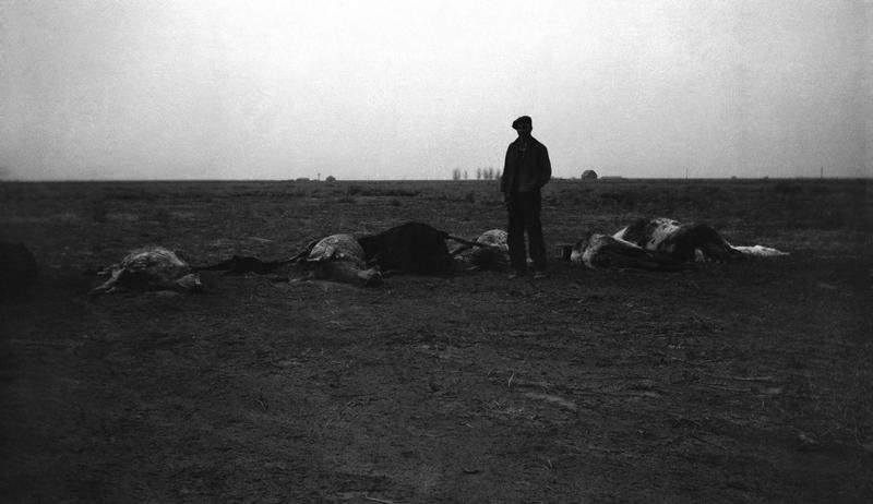 Farmer in the Dust Bowl