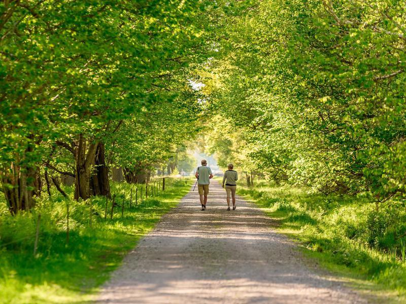 Couple walking in Sweden