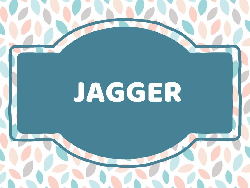 'J' Boy Names: Jagger
