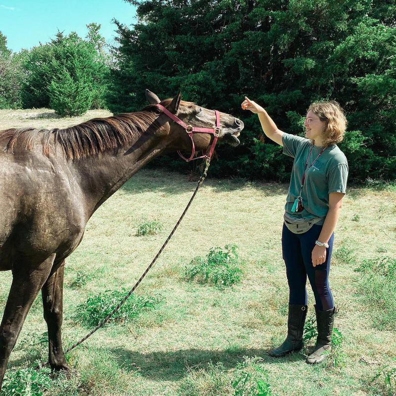 Trainer With Horse