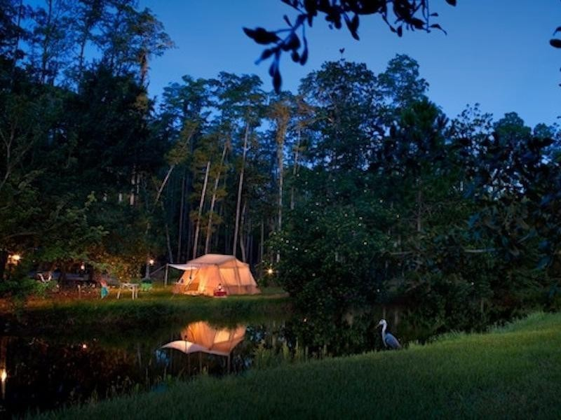 Campsites at Fort Wilderness