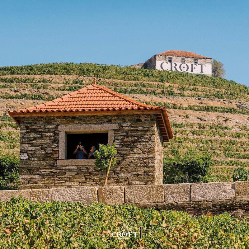Croft Port vineyard