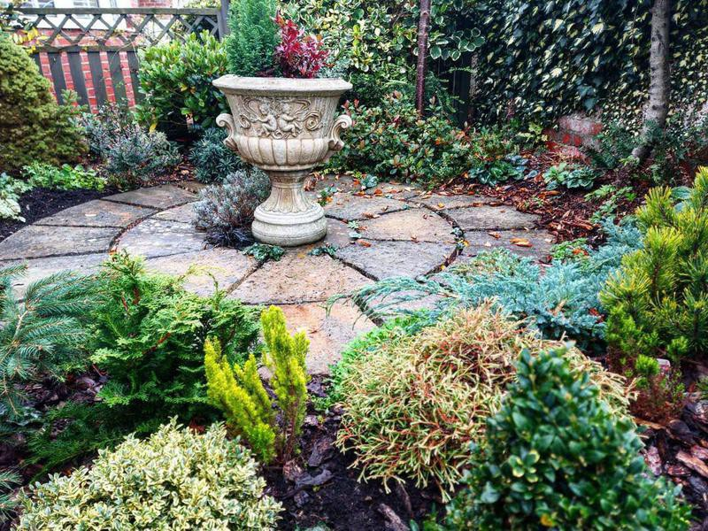 Front garden with bushes and large pot