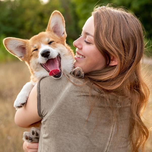 Most Affordable Dog Breeds in the World