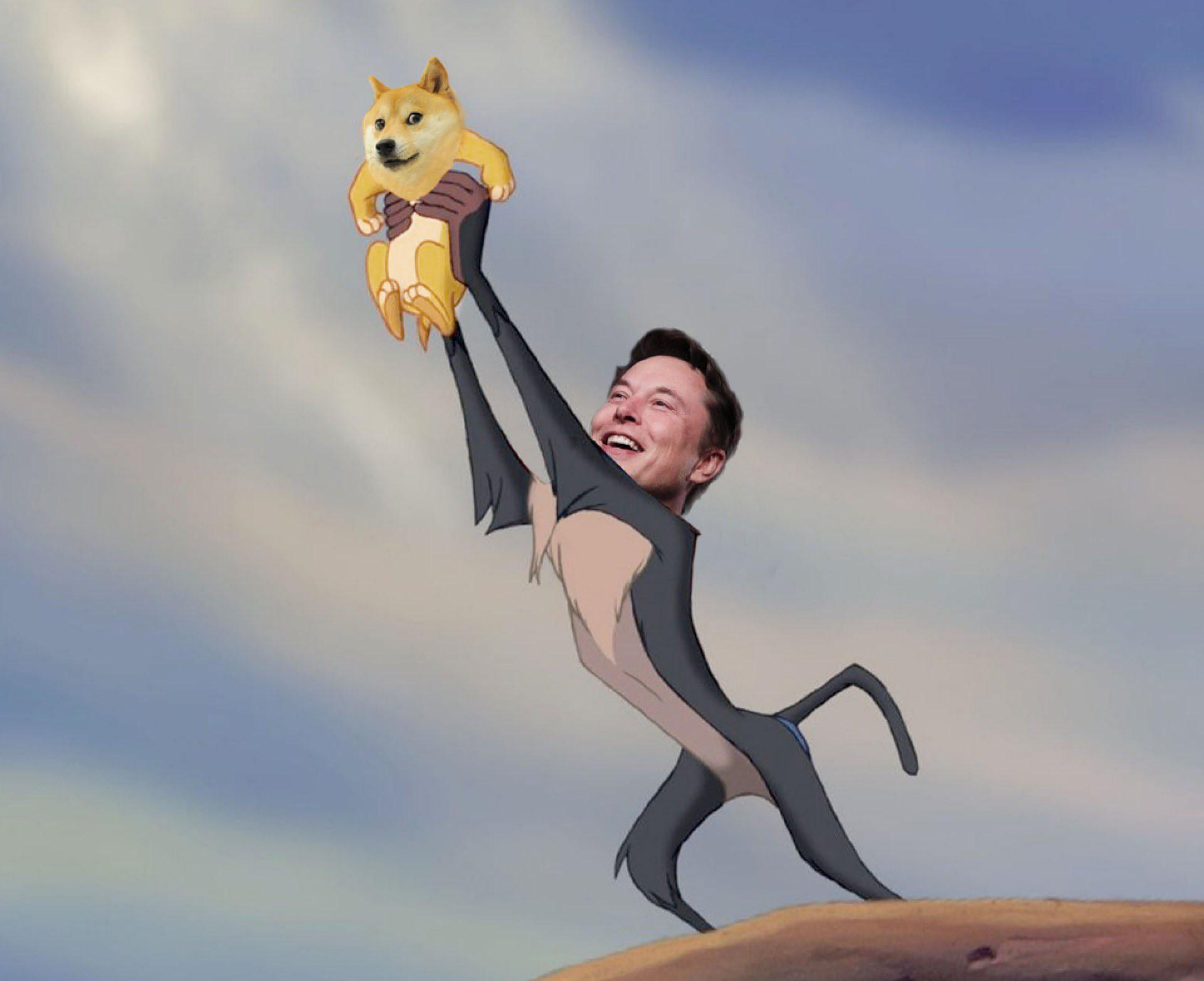 Elon Musk Lion King Dogecoin meme