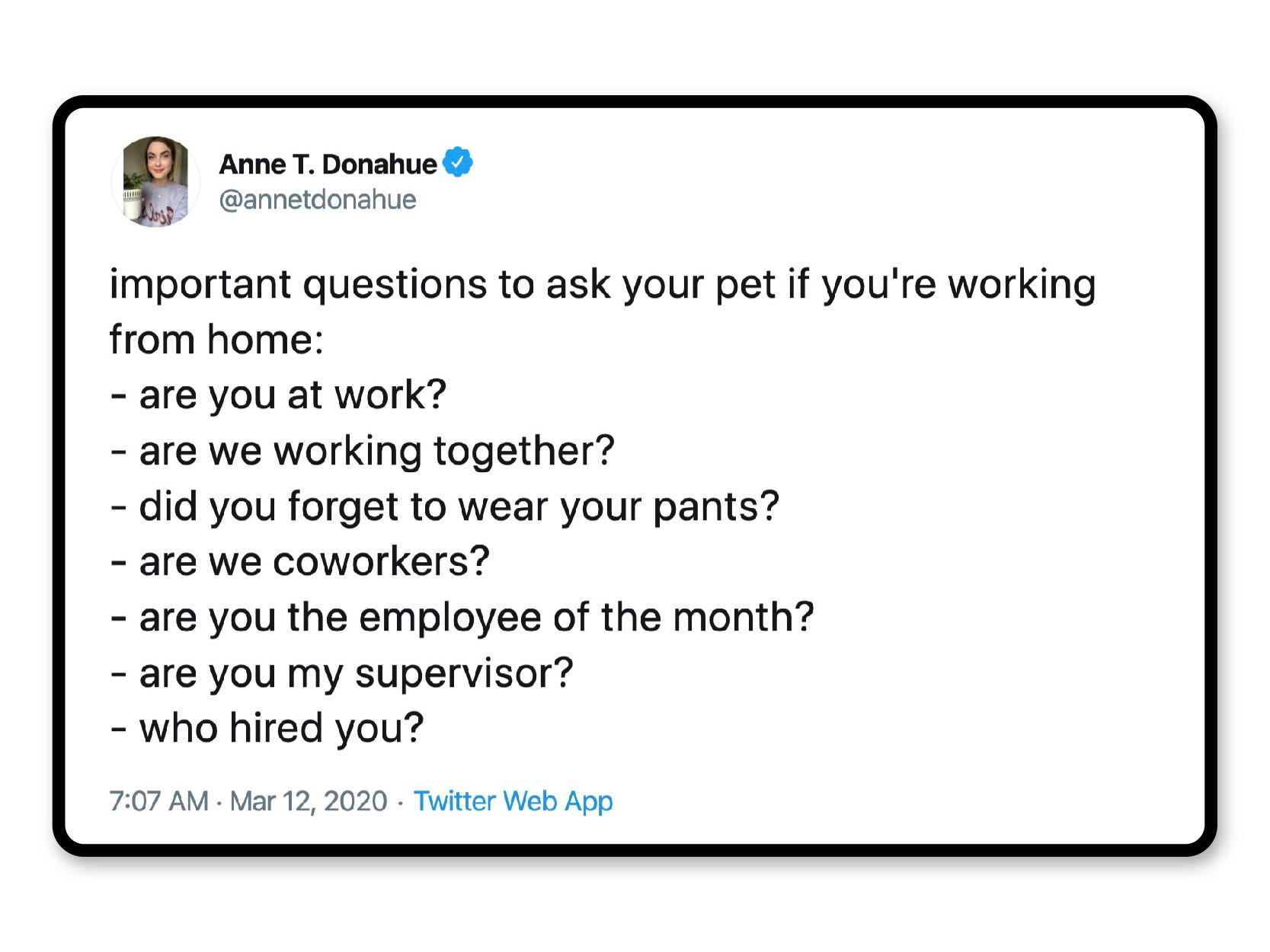 Pet interview