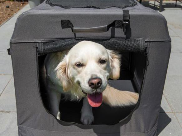 Tractor Supply dog kennel: Heininger PortablePet Soft Crate Portable Dog House
