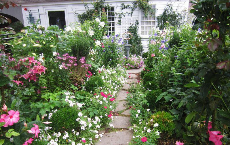 Pathway garden with lots of plants