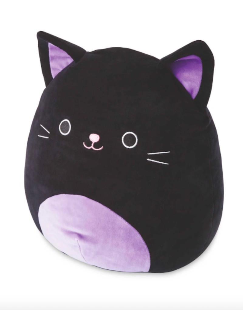 Autumn the Black Cat