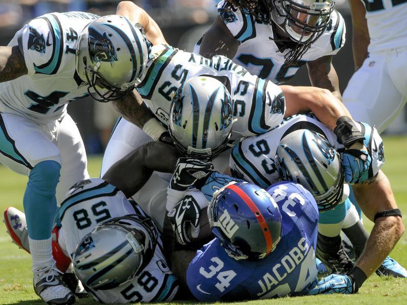 2013 Carolina Panthers