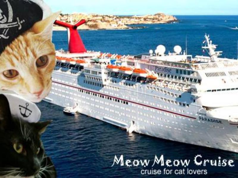 Meow Meow Cruise