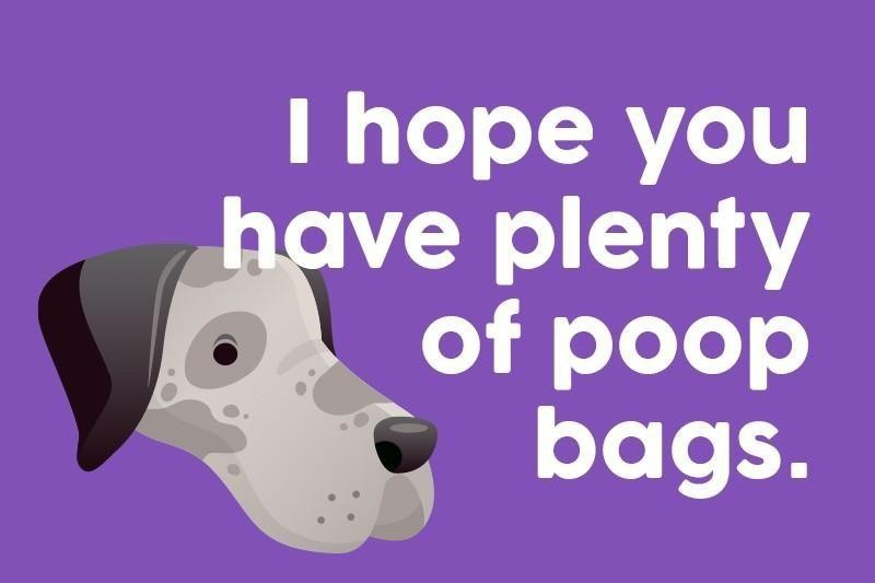 I hope you have plenty of poop bags.