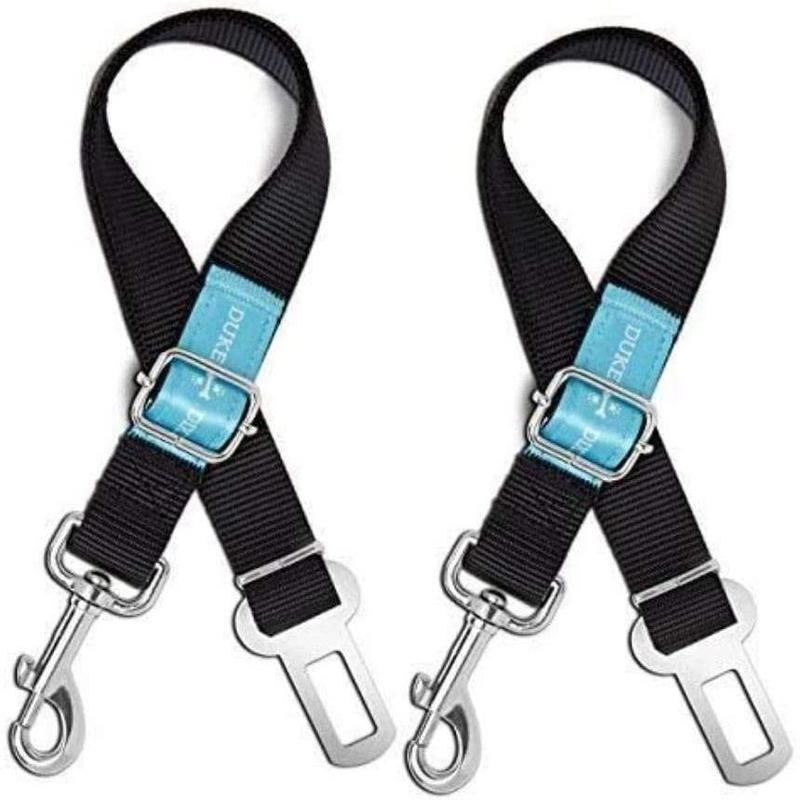 Black dog seat belts with baby blue logo