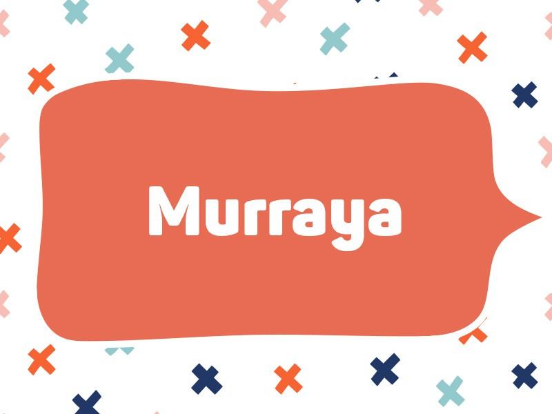 2021: Murraya
