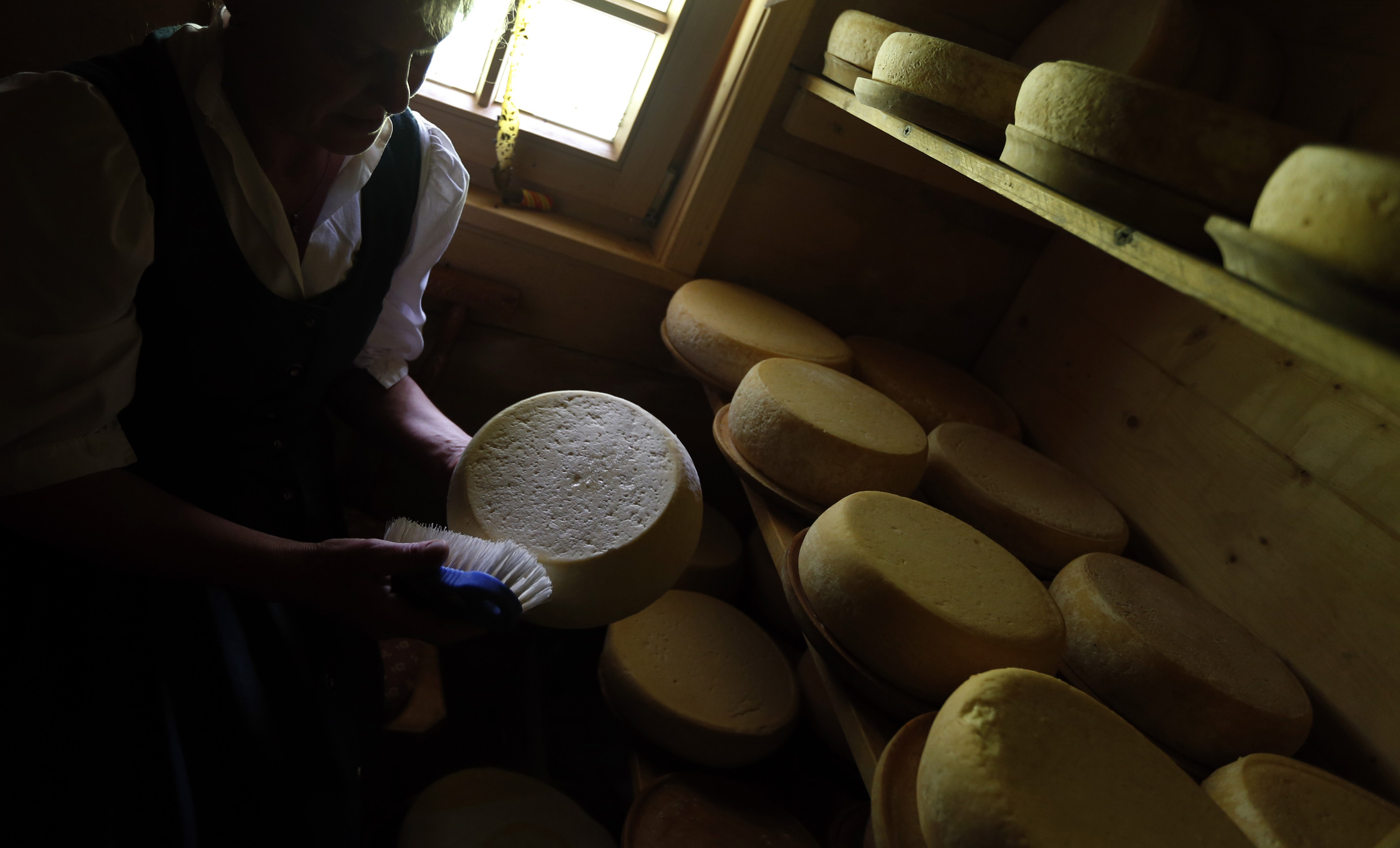 Cheese in Germany