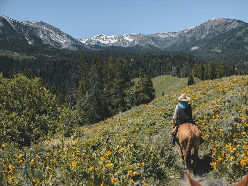 Horseback riding in the spring at Grand Tenon National Park