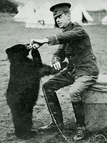 Winniepeg the bear (Winnie the Poo) and her owner