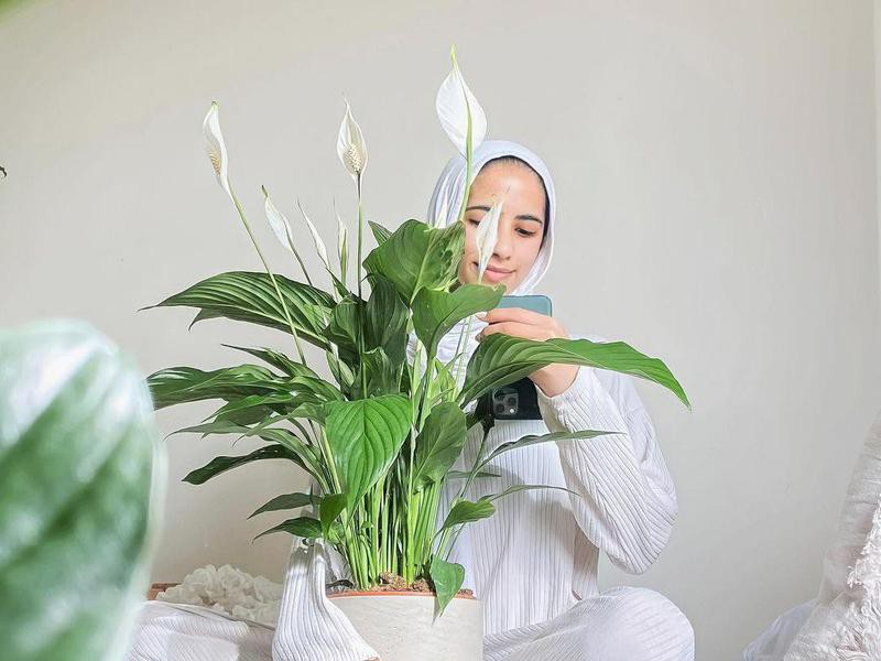 Woman holding a peace lily plant