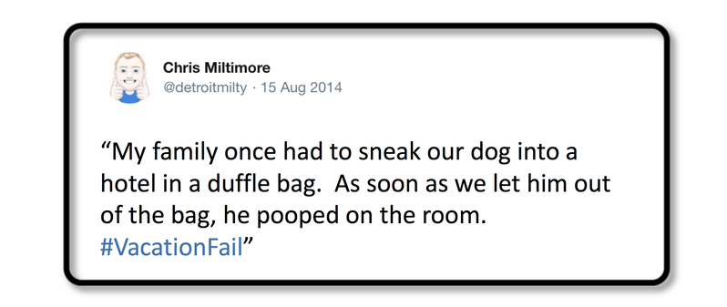 Dog Travel Fail