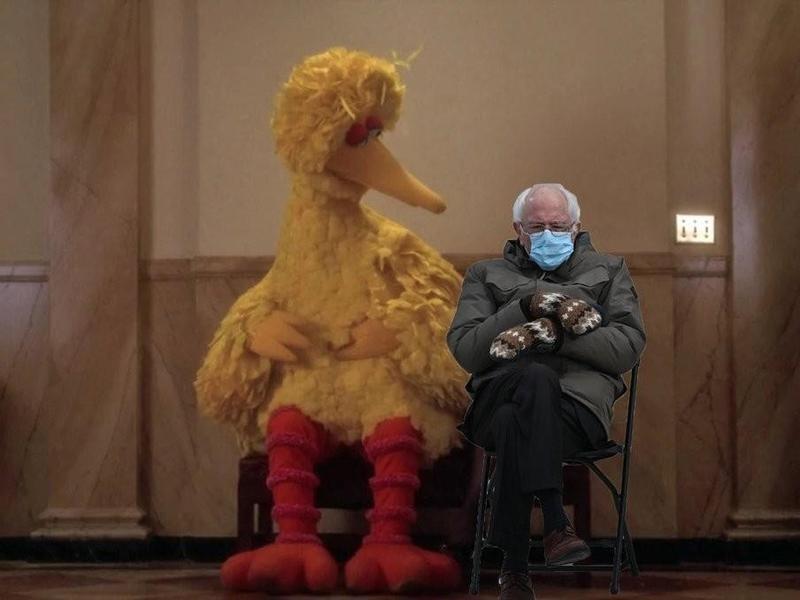 Bernie Sanders and Big Bird