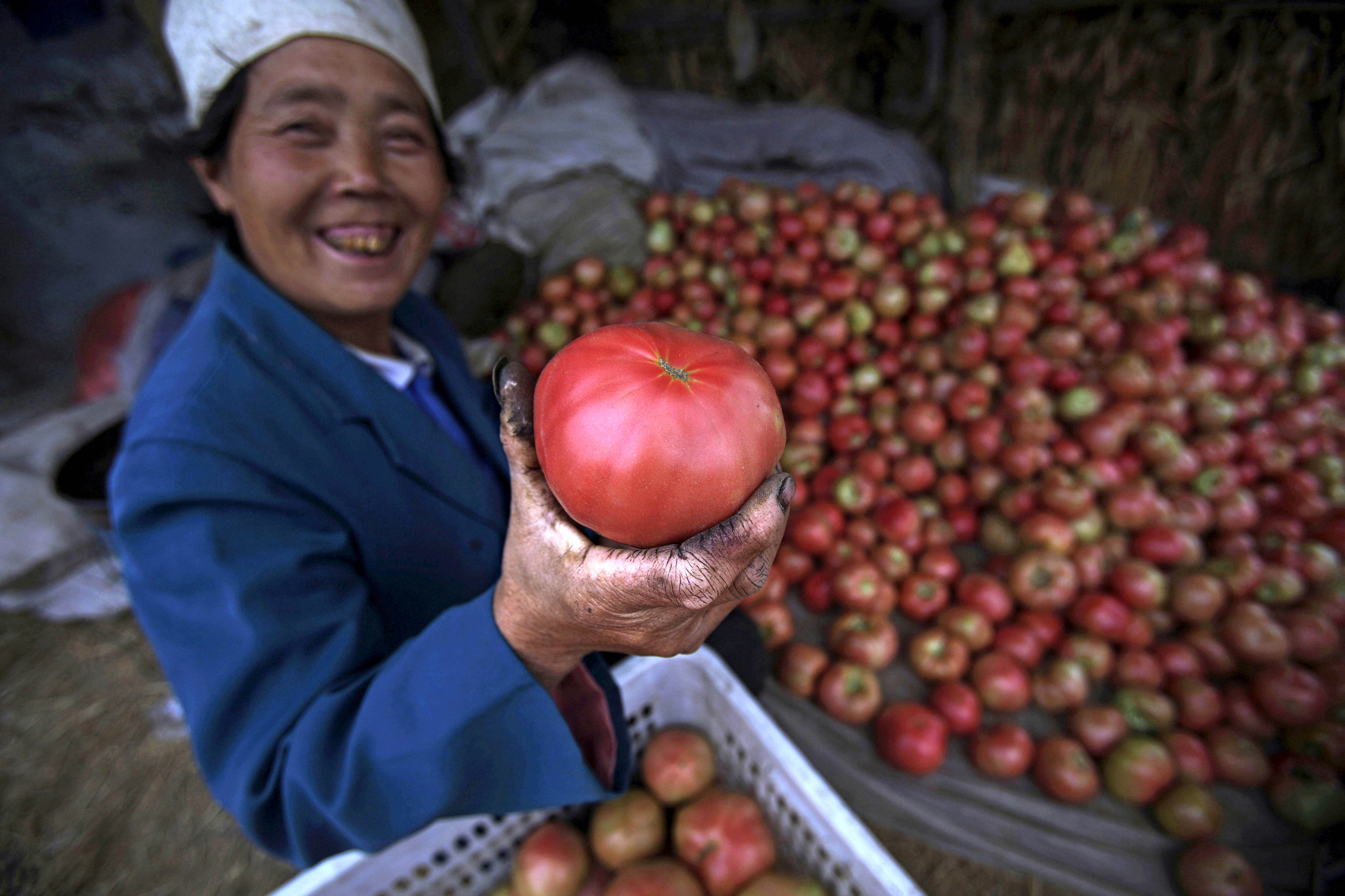 Tomatoes in China