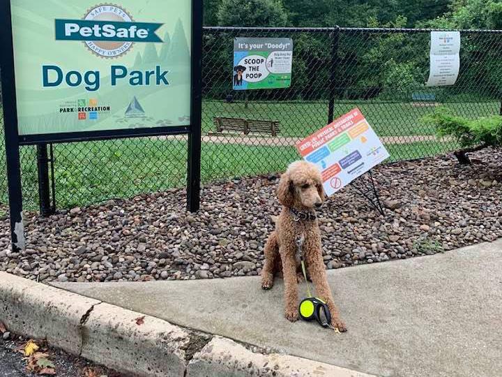 Huntington's PetSafe Dog Park