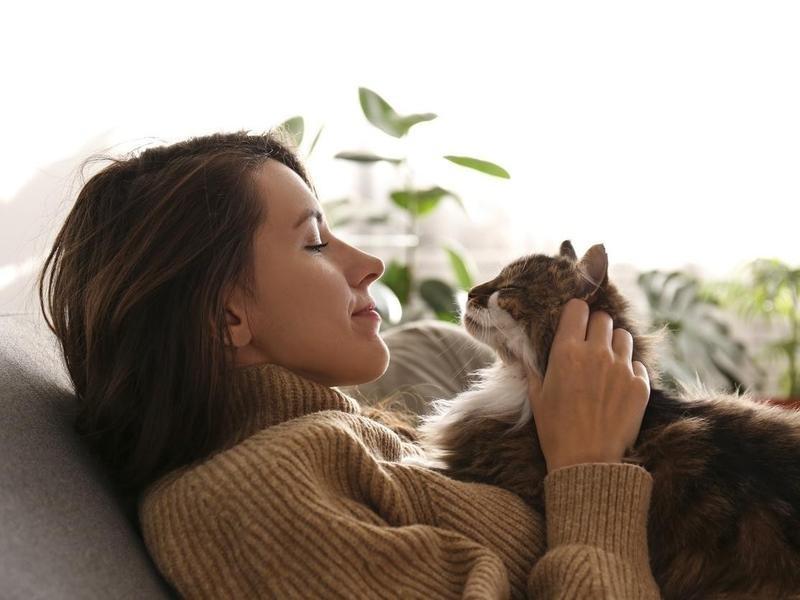Side Petting