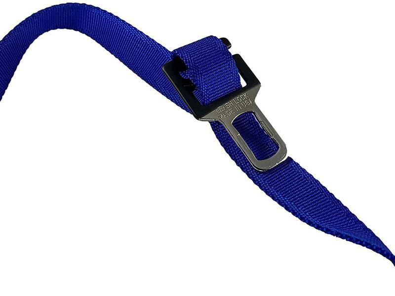 Leash lock for car dog harness