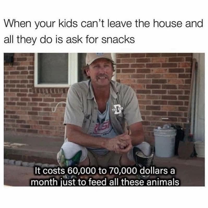 Feeding kids meme
