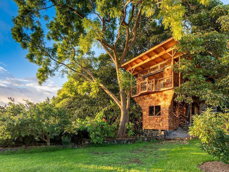 Kona tree house in Hawaii