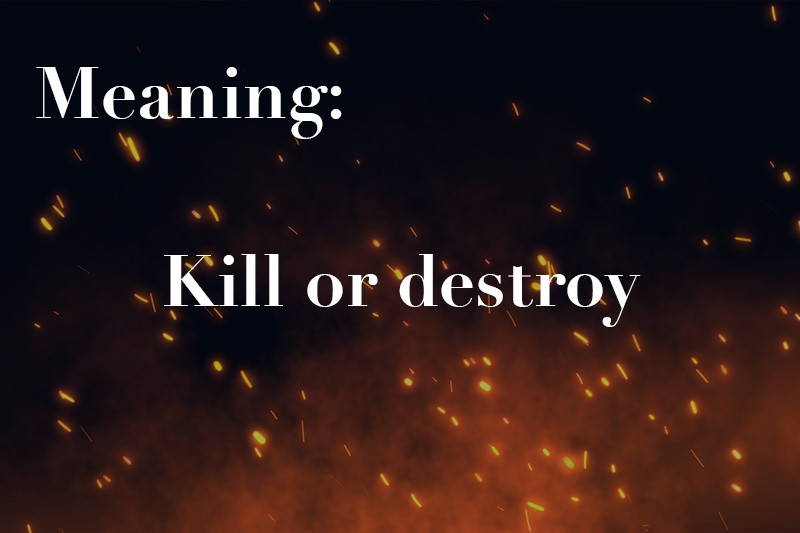 kill or destroy