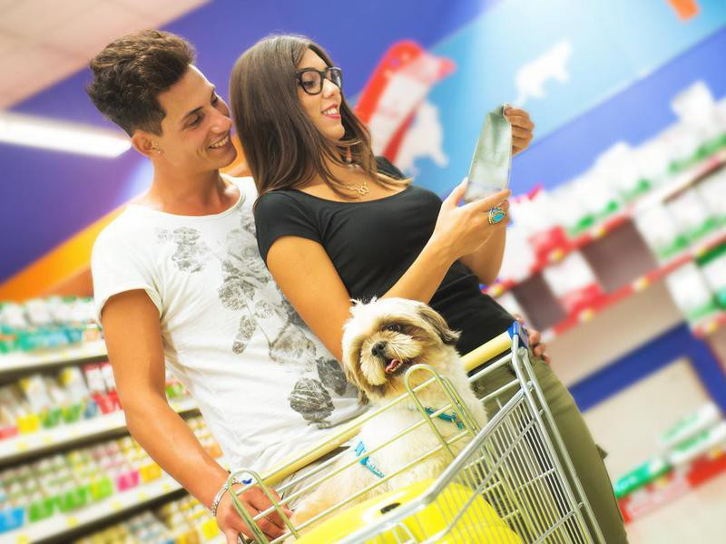 Couple Shopping in Pet Store with Shih tzu in