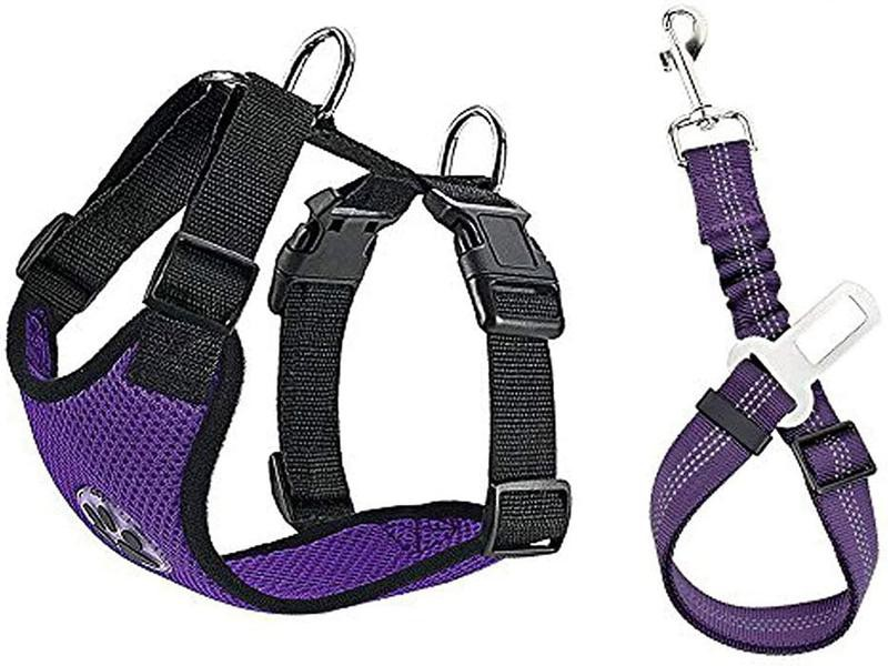 Purple dog harness with paw print