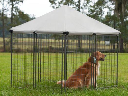 Tractor Supply dog kennel: Retriever HD4545 Pet Retreat Portable Kennel