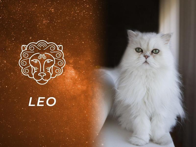 Leo: Persian