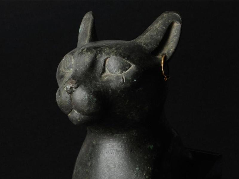 cat egypt