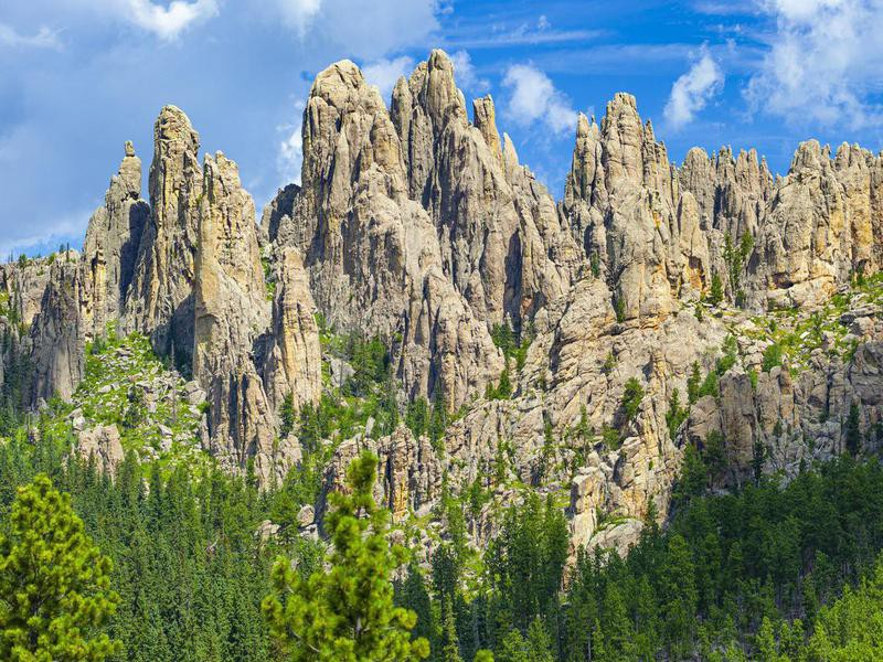 Cathedral Spires In Custer State Park, South Dakota