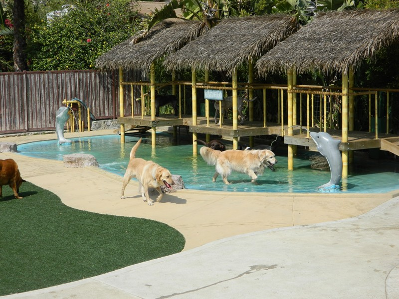 Paradise Ranch Resort