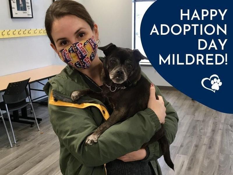 Mildred's Adoption Day