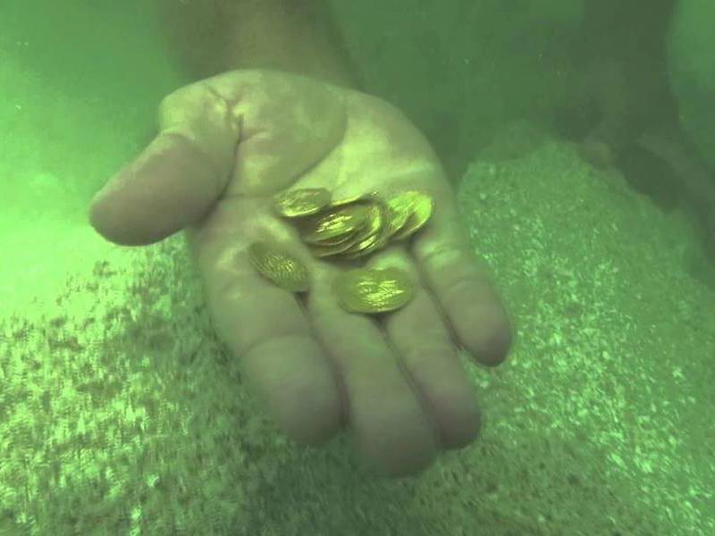 1715 fleet gold