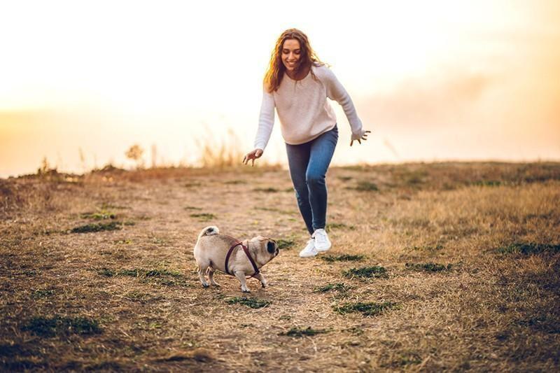 woman and pug playing
