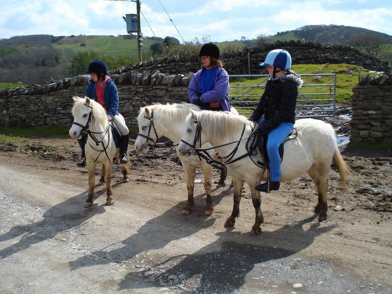 Children on Welsh Ponies