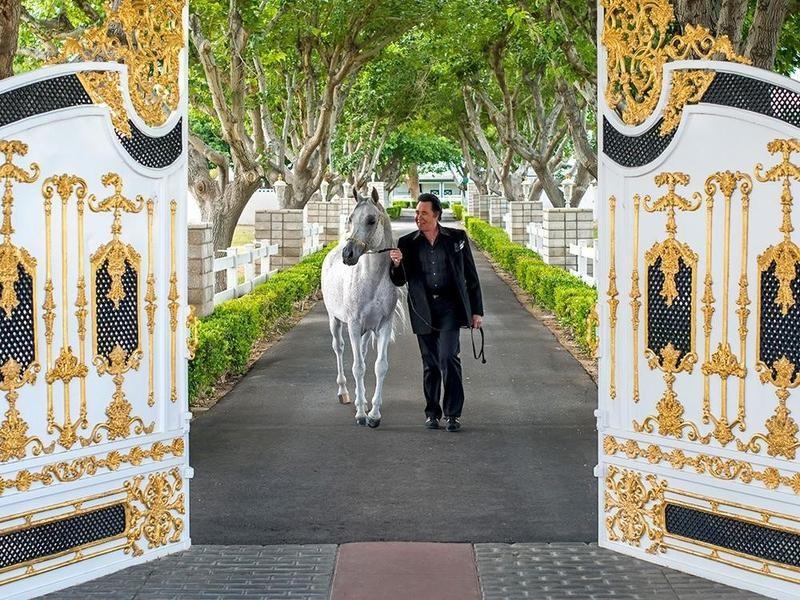 Wayne Newton with an Arabian horse