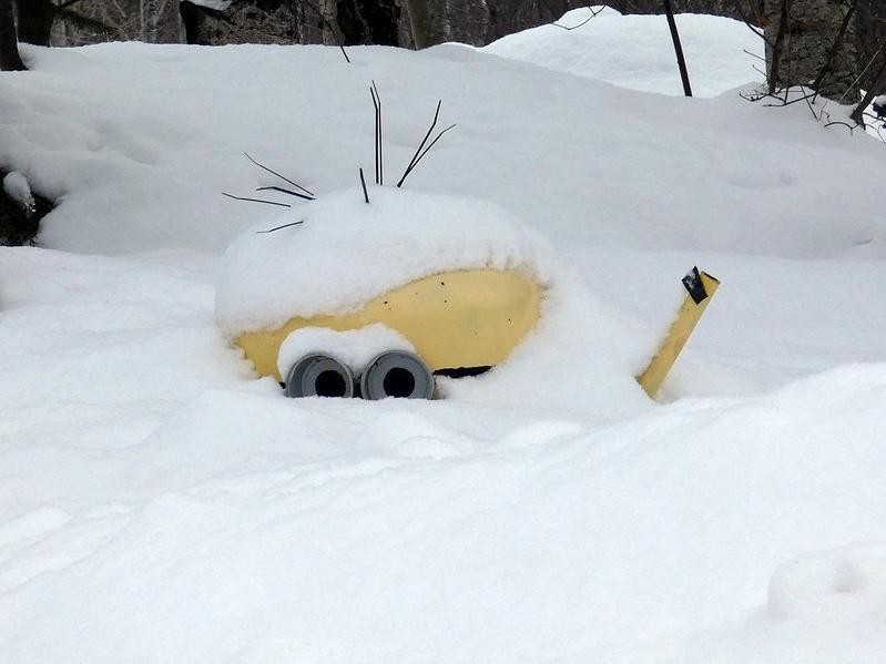 Minion buried in snow